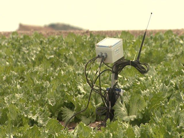 Nuevos retos de la agricultura sostenible, sistemas de cultivo que reutilizan el