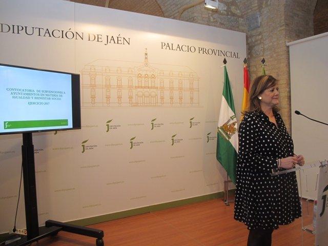 Presentación de las subvenciones en materia de Igualdad y Bienestar Social.