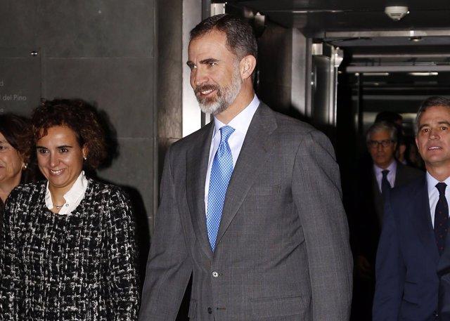 El Rey Felipe VI/ JAVIER RAMIREZ