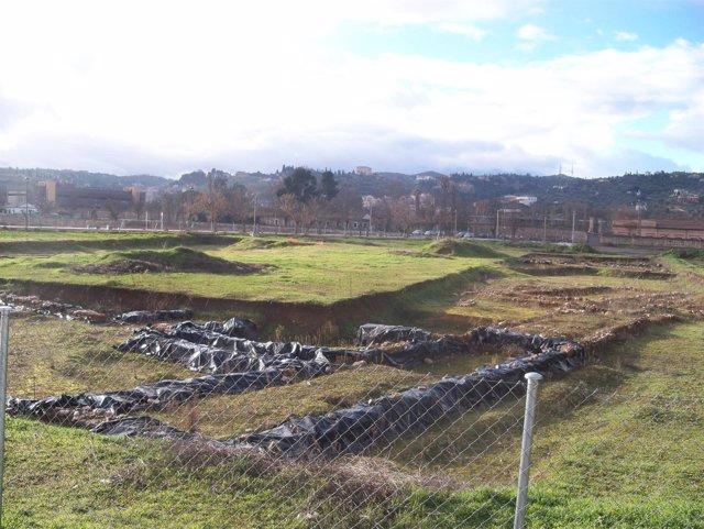 Yacimiento arqueológico de la Vega Baja