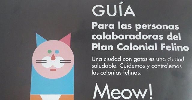Plan Colonial Felino