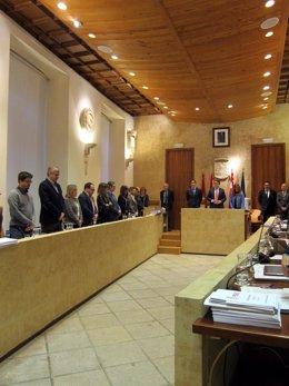 Pleno en el Ayuntamiento de Salamanca.