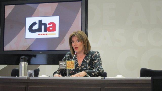 La portavoz de CHA en las Cortes, Carmen Martínez