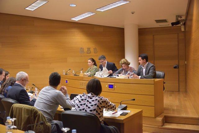 Comisión de Coordinación en las Corts