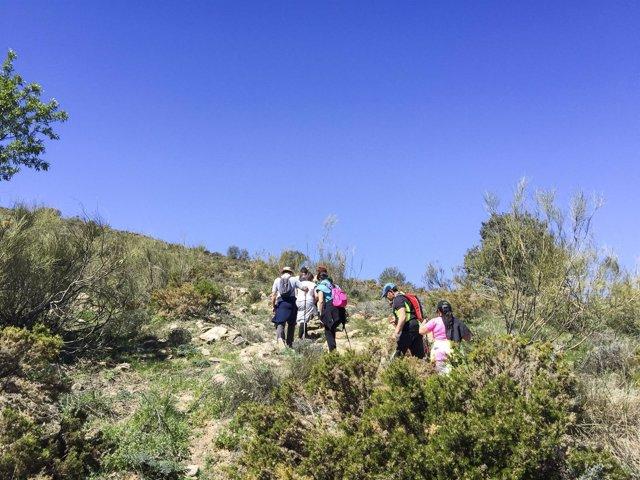 Los senderistas han disfrutado de una ruta por el entorno de Tahal.