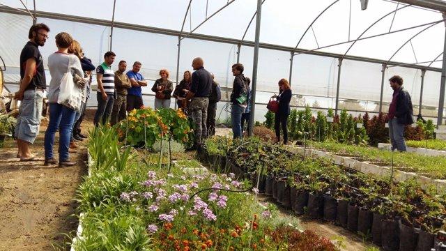 Diputación de Córdoba pone en valor variedades hortícolas de la provincia