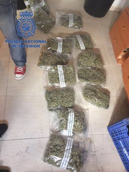 Los policías encontraron varias bolsas con cogollos