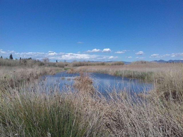 Laguna donde se denunciaron a los pescadores