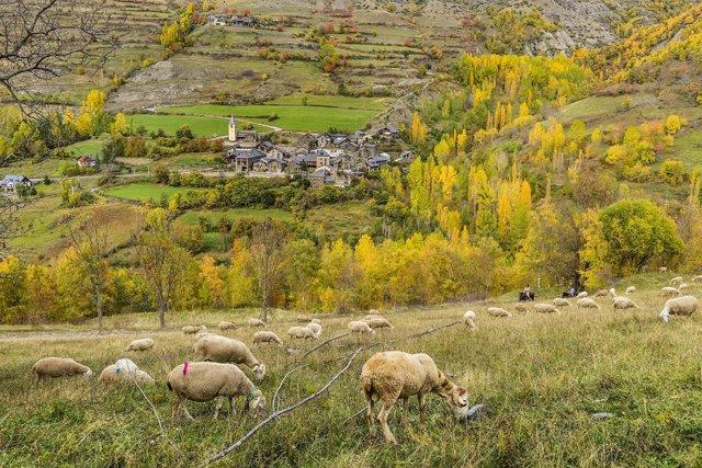 Esterri de Cardós, en el Parc Natural de l'Alt Pirineu