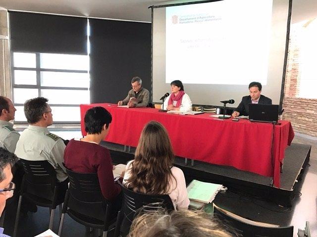 La directora de Bosques de la Generalitat Montse Barniol