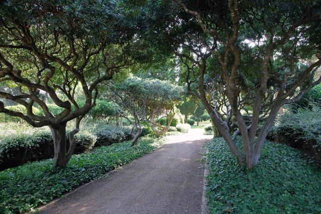 Costa dice que la apertura de los jardines de Marivent es 'inminente'