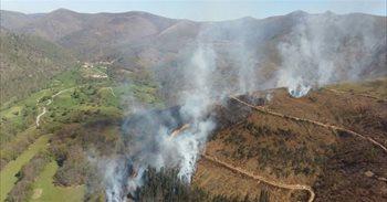 Cuatro incendios forestales continúan activos en Cantabria