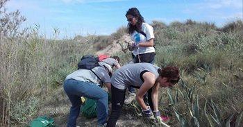 Trabajadores de Quirónsalud participan en una tarea de erradicación de...
