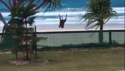 El salto de valla de este perro se ha convertido en un fenómeno viral en Facebook