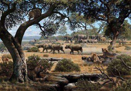 Científicos españoles descubren que el perro-oso y la hiena cazaban en hábitats más abiertos que el resto en el Mioceno