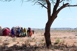 El riesgo de hambruna sigue planeando sobre Somalia