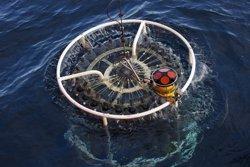Los virus, causa significativa de mortalidad de las bacterias en las profundidades oceánicas