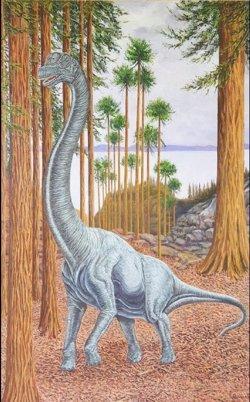 Identificado en Soria un nuevo saurópodo de más de 13 metros de longitud