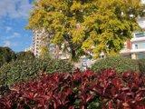 El primer fin de semana del otoño estará soleado y subirán las temperaturas en la mayor parte del país