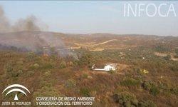 Estabilizado el incendio forestal declarado en El Ronquillo (Sevilla)