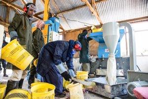Un programa de reciclaje de plástico ayuda a preservar el medio ambiente en Dadaab