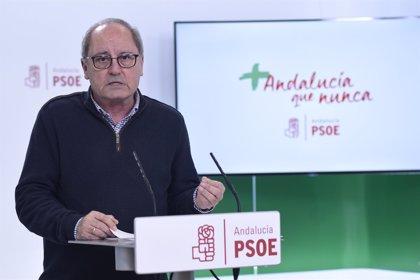 PSOE espera que los