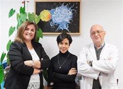 El CNIC halla que la expresión de una molécula en células de la sangre predice el riesgo de enfermedad aterosclerótica