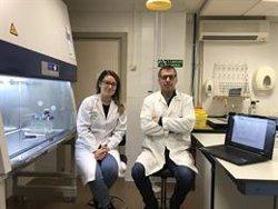 Desarrollan un modelo matemático que evalúa el riesgo de transmisión del virus de gastroenteritis en comedores