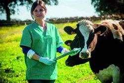 Covap recibe el certificado Aenor de Bienestar Animal por su modelo de calidad desde el origen de producción
