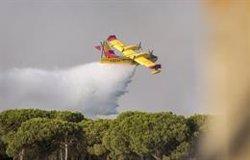 WWF a los dos años del incendio de Doñana: