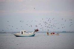 El proyecto Medfish de MSC y WWF contará con cinco nuevas pesquerías con el objetivo de lograr una mayor sostenibilidad