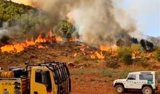 Maderea reclama aumentar la gestión de la madera en España para evitar los incendios y reducir el riesgo de plagas