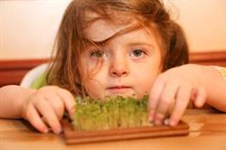 Ofrecer variedad de verduras a los niños es la clave para que estos la acepten, según un estudio