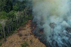 Brasil prorroga la presencia de las Fuerzas Armadas en la Amazonía para luchar contra los incendios