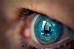 El 70% de las pérdidas de visión grave está producida por problemas en la retina, según experto