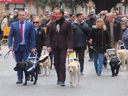 Los perros guías pasean este sábado por Madrid para reivindicar sus derechos de acceder a lugares públicos