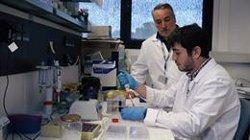 Investigadores españoles desarrollan un nuevo biomarcador para diagnosticar precozmente el cáncer de próstata
