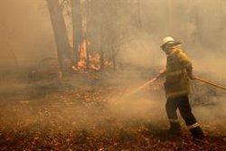 Cancelado el Rally de Australia por los incendios forestales en Nueva Gales del Sur