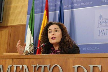 IU Andalucía no cree que los ERE afecten al preacuerdo Sánchez-Iglesias y dice que la dimisión de Díaz