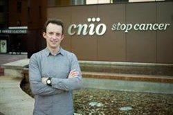 El CNIO crea un Grupo de Oncología Computacional para profundizar en la medicina de precisión contra tumores complejos