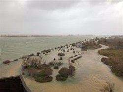 Expertos aconsejan cambiar la planificación futura del litoral una vez pasados los daños de 'Gloria'