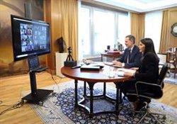 Los Reyes presiden un Pleno virtual de la RAE centrado en el debate de palabras usadas durante la pandemia