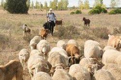 UPA cree que la estrategia 'De la Granja a la Mesa' es una oportunidad para agricultura y ganadería familiar