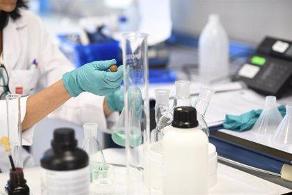 El CSIC continúa siendo más igualitario que otras instituciones, pero necesita más investigadoras jóvenes