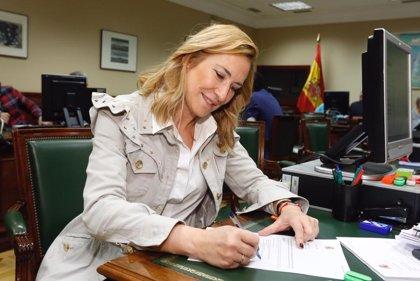 Beltrán (PP) pide unidad de voto de centro-derecha en Euskadi o advierte de que se favorecerá a Bildu