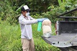 Ecuador registra 877 nuevos contagios y más de 5.700 fallecidos totales por coronavirus