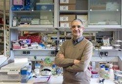 Investigadores españoles entregan 650.000 firmas al Gobierno por la mejora de la ciencia y la investigación en España