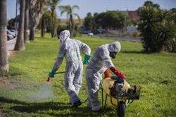 El virus del Nilo causa una cuarta muerte en Sevilla, un hombre de 77 años