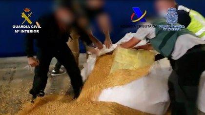 Intervenida más de una tonelada de cocaína en sacos de maíz de un barco que hacía la ruta entre Brasil y Cádiz