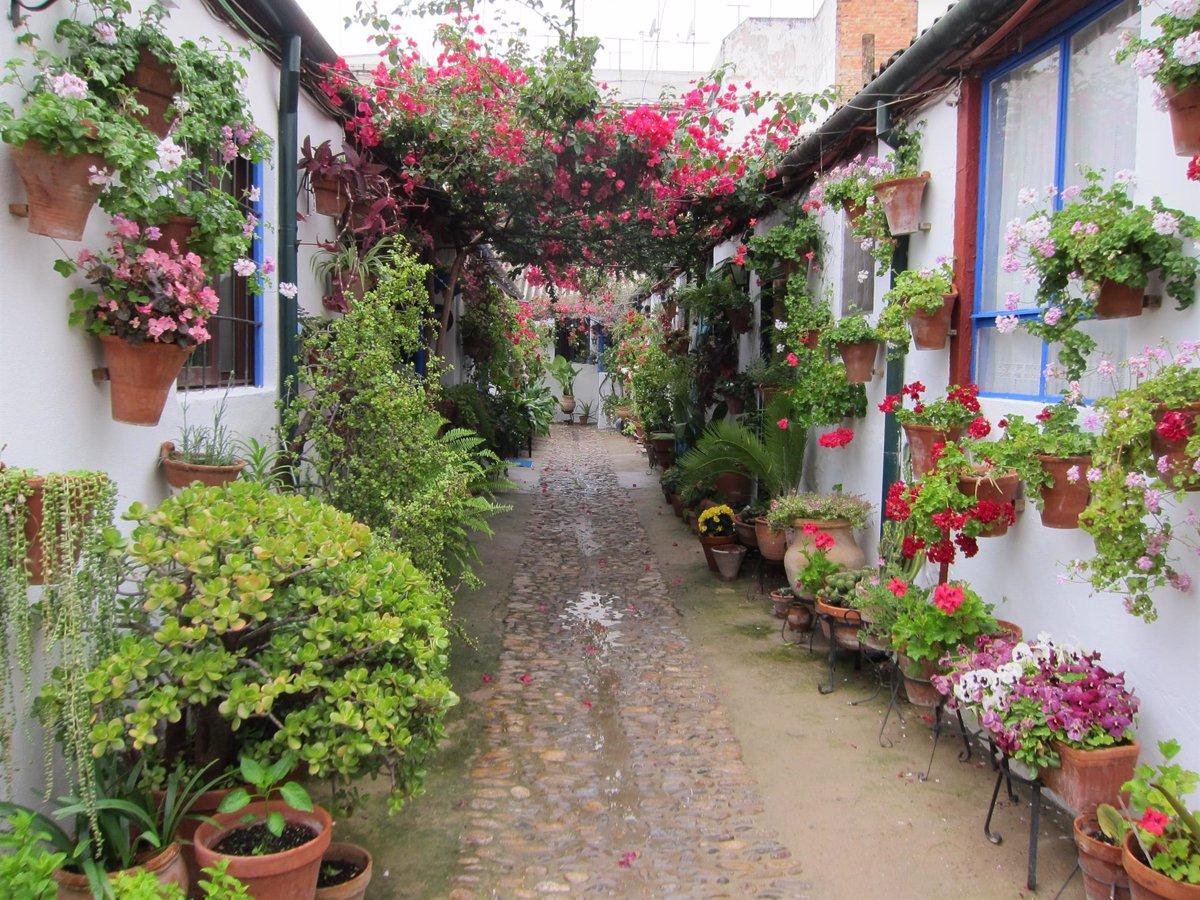 La Fiesta de los Patios de Córdoba se celebrará del 3 al 16 de mayo - Descubrir
